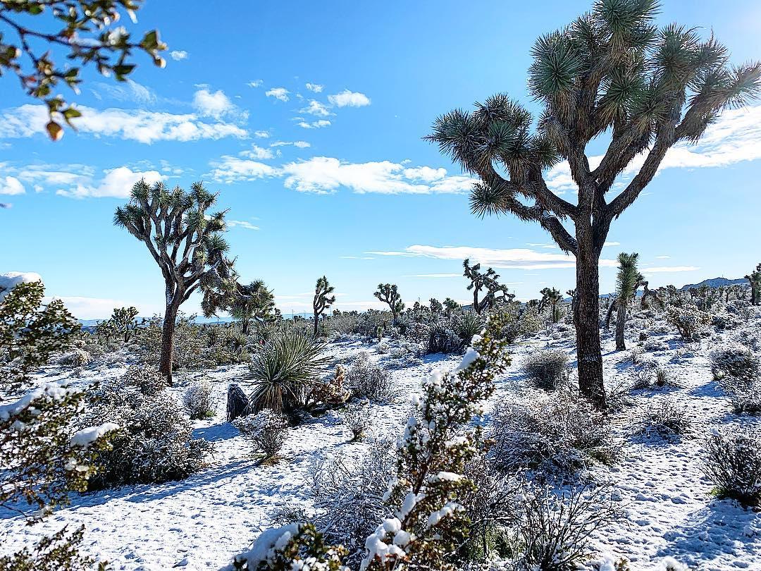 沙漠里下雪的冬天-有意思吧