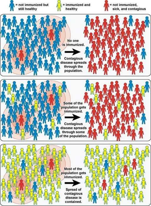 什么是群体免疫力?-有意思吧
