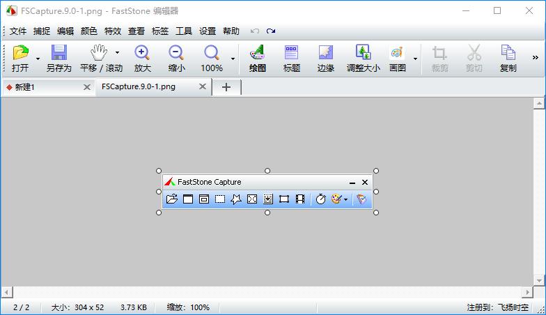 FastStone Capture 9.0图像浏览工具-有意思吧