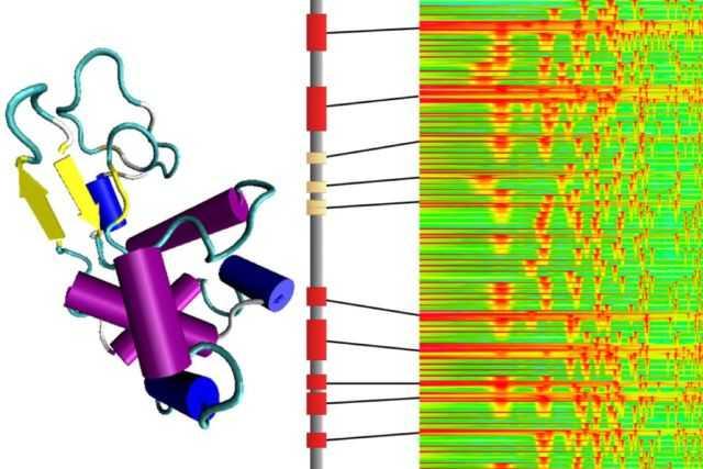 有意思吧 麻省理工学院的科学家把氨基酸变成了音乐 科学