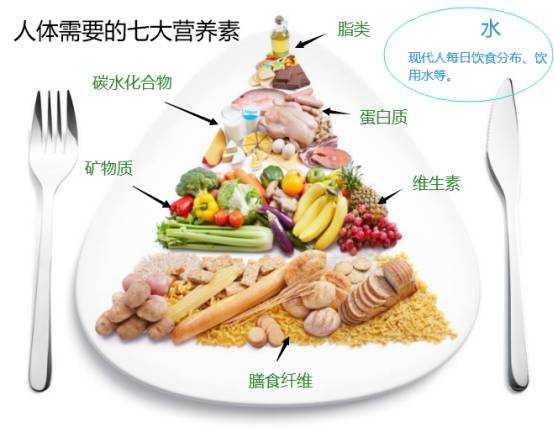 学会吃瘦,从导致长胖的源头开始-有意思吧